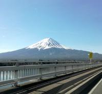 箱根・ポーラ美術館 - ひだまりの庭 ~ヒネモスノタリ~
