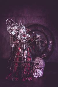 Fate Grand Order カーミラコスプレ衣装Fullset - Velvet Rose