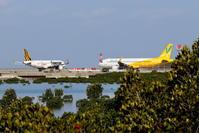 黄色のLCCたち - 南の島の飛行機日記
