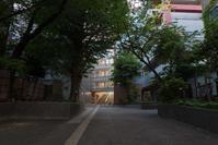 校舎 - 社会人美大生の写真日記。