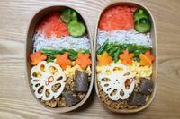 5色ごはんのお弁当と前世&来世(^.^) - オヤコベントウ