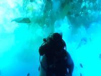 魚のいない海 - ダイアリー