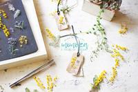 ミモザの「押し花メルシータグ」と「キャンドル」といろいろお知らせ - a piece of dream* 植物とDIYと。