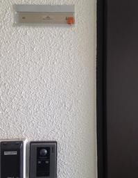 ミモザの日 - 『熱海で暮らす』 リゾート不動産情報