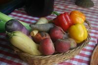 ビストロ料理紹介⑫ - 神楽坂のラビチュードの美味しい話