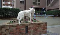 Vol.1308 東上町公園 - 小太郎の白っぽい世界