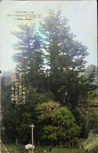 【田舎なのに大変化】絵葉書でたどる高知ひとむかし【人工彩色処理】 - 揺りかごから酒場まで☆少額微動隊