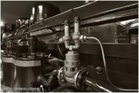 NOKTON VISION @鉄道博物館 #004 - ルリビタキの気まぐれPATA*PATA