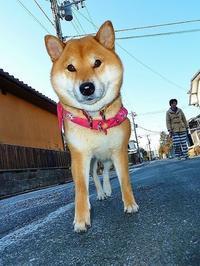 東日本大震災7年 - 写心食堂
