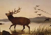 The Sanctuary の牡鹿 - ドラゴンストーンのランダムウォーカー