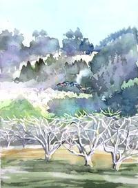 待春・リンゴ園 - ryuuの手習い