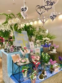 ホワイトデー - ~ Flower Shop D.STYLE ~ (新所沢パルコ・Let's館1F)