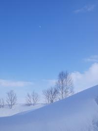 雪どけ - タヒチ ランギロア島暮らし~北のコジョウ森人日記
