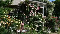 産経学園・新百合ヶ丘教室「素敵にローズライフ」4月期ご参加者様募集 - 元木はるみのバラとハーブのある暮らし・Salon de Roses