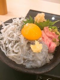 しらす丼 ~魚とsakana@岡崎 - Que Sera Sera 2