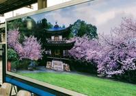 そうだ!京都に行こう。とJR東海 - 設計事務所 arkilab