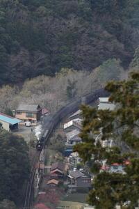 笹間渡 14時46分- 大井川・2018年早春 - - ねこの撮った汽車