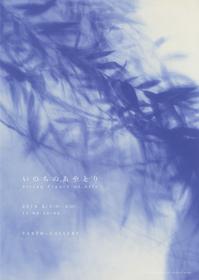 【作品発表のお知らせ】いのちのあやとり-String Figure of Life- - Shunya.Asami-Portfolio-