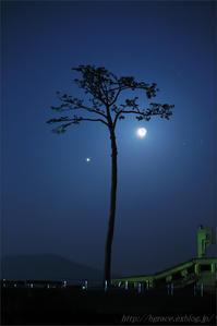 東日本大震災から7年 - 遥かなる月光の旅
