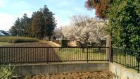 春はもうすぐ - Peaceful Coexistence - エビとけものと家族たち