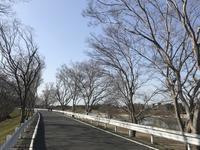 平坦コースでお花見ポタ - 宝塚マドン