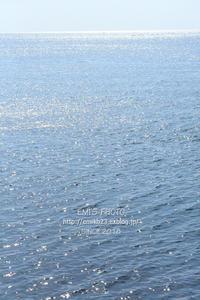 水仙の里と鞆の浦散歩 - my FHOTO
