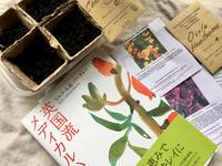 """出版から10年目となりました🌿『英国流メディカルハーブ』とのご縁 - 英国メディカルハーバリスト&アロマセラピストのブログ""""Herbal Healing 別館"""""""