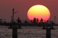 釣り公園夕陽(3月11日) - 月の沙漠を