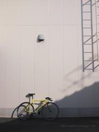 黄色い自転車 - *Any*