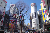3月12日(月)の109前交差点 - でじたる渋谷NEWS