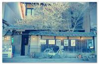 蝋梅と古民家と自転車と。 - Yuruyuru Photograph