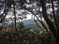矢滝城山 - 清治の花便り