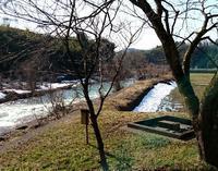 お部屋の前をパカパカ - 金沢犀川温泉 川端の湯宿「滝亭」BLOG