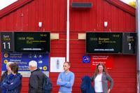 欧州出張2017年09月-第四日目-ベルゲン鉄道でベルゲンへ - 海外出張-喜怒哀楽-