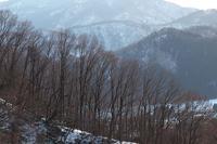 一日の終わり、冬の終わり - 但馬・写真日和