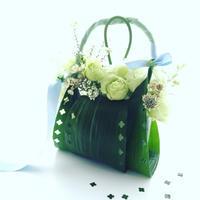 ハランのバッグ  レシピ付き* - **おやつのお花*   きれい 可愛い いとおしいをデザインしましょう♪