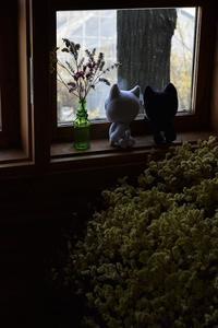 富久樹園カフェ - 光画日記