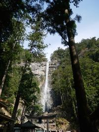 今年も熊野三山巡り - ご機嫌元氣 猫の森公式ブログ