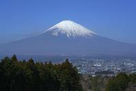 今日の富士山 - エーデルワイスPhoto