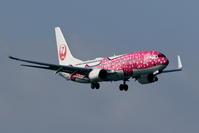 遅ればせながら初撮影 新さくらジンベエ - 南の島の飛行機日記