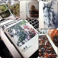 りょうさんの写真集『山葡萄』 - Darjeeling Days
