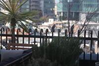 鳥と一緒に食事する - noanoa laboratory