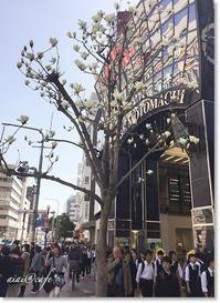 ホワイトデーは神戸へ! - aiai @cafe