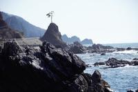 日本海の荒くれ岩 - yosimasaフォトアルバム