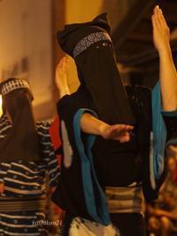 西馬音内盆踊り Ⅸ - 花鳥風猫ワン