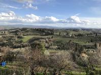 キャンティ地方、ブドウ3月上旬の生育日記2018 - フィレンツェのガイド なぎさの便り