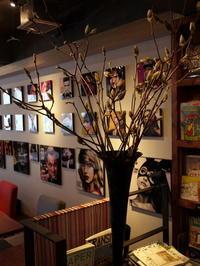 今週のWORLD BOOK CAFEさんは「ハクモクレン」。2018/03/17。0。 - 札幌 花屋 meLL flowers