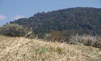 桜井市 三輪の麓 ② - ぶらり記録(写真) 奈良・大阪・・・