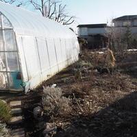 大雪のメリット - sola og planta ハーバリストの作業小屋