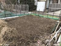 2018年の畑作業開始! - 家庭菜園ニストabuさん家の美味あれこれ